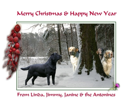 Linda_new_xmas_card_with_gsp1-