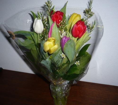 Varberg_blommor